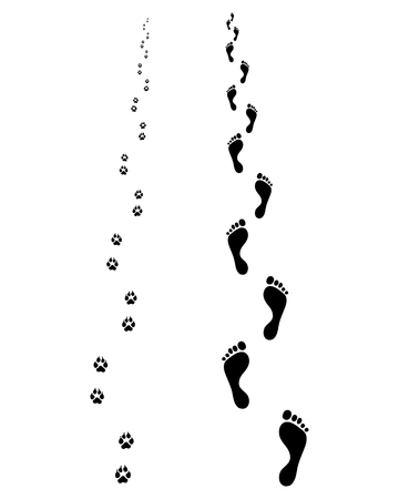 foot path: Footprints of man and dog