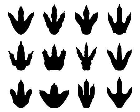 dinosaurio caricatura: Negro diferentes huellas de dinosaurios, vector
