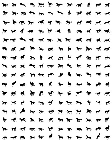 Big set of horses silhouettes on a white background