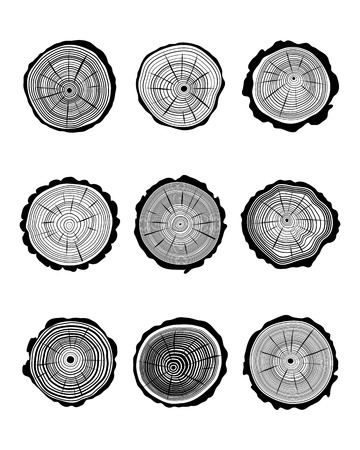 logging: Set of cross section of trunks on a white background