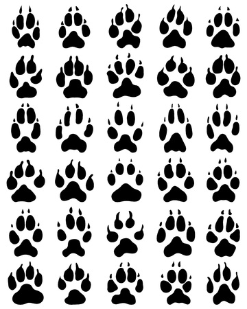 Black print of paw of dogs on a white background