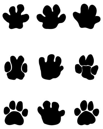 Black footprints of hippopotamus on a white background