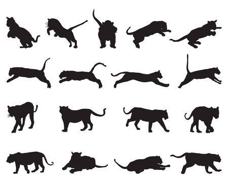 Black tiger silhouettes on white background