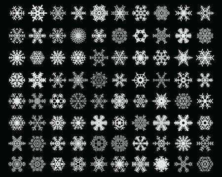 Set of different white snowflakes on a black