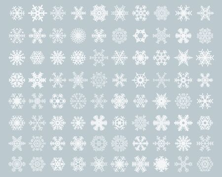 Set of different white snowflakes on a gray