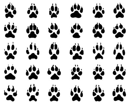 Black print of dogs paws on white background