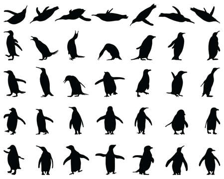 Black silhouettes of penguins on a white background