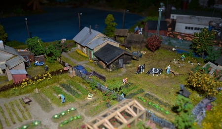 Country life in miniature