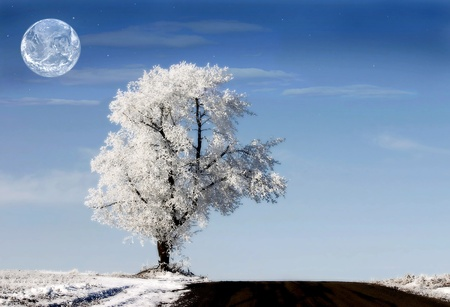 White planet with alone white tree and earth in the sky photo