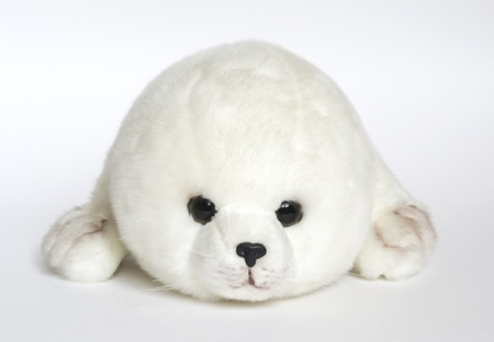 toy young seal on white background
