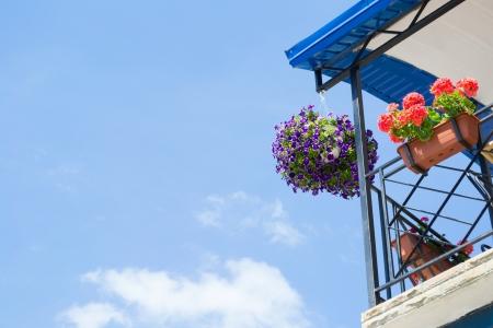 Flor pendurado no vaso no canto do telhado no fundo do c