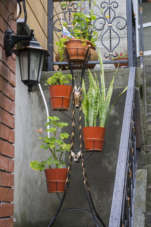 stand for pots with flowers near stairs