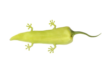 imagined genetically modified pepper with animal molecules, pepper with legs and tail Stock Photo