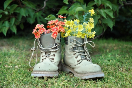 Vertical image of red and yellow flowers in old gray shoes on grass Stock Photo