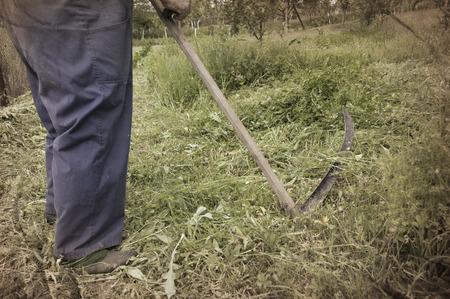the scythe: Detalle de la vieja manera de siega de hierba con guada�a Foto de archivo