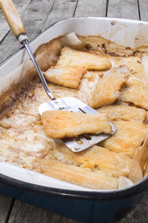 sheatfish: roasted catfish fillets in baking pan on baking paper with serving spoon
