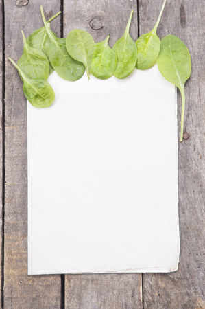paper framed with green spinach leaves on wooden background Stock Photo