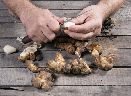 jerusalem artichoke: Man peel raw Jerusalem artichoke on wooden background