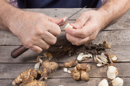 jerusalem artichoke: Chopping raw Jerusalem artichoke with kitchen knife