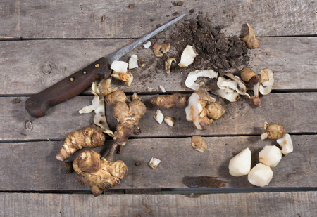 jerusalem artichoke: Raw and peeled Jerusalem artichoke with knife and dirt on wooden background