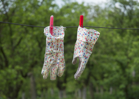 garden gloves on a wire with blurry green background