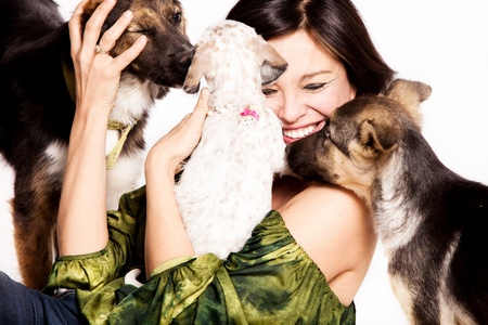 adopted: happy woman with three adopted street dogs, studio shot Stock Photo