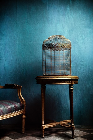 louis: old louis style carved  roundtable and golden old bird cage Stock Photo