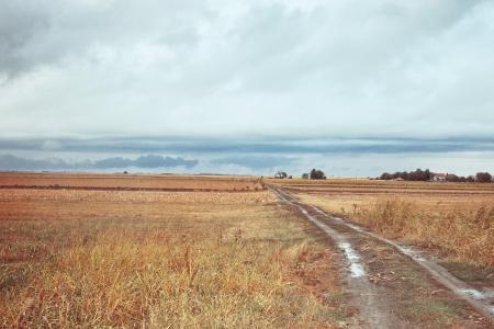 autmn: countryside rainy autmn day