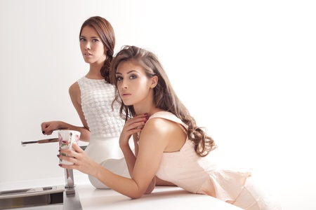 couple of elegant young women in modern kitchen Stock Photo - 16847785