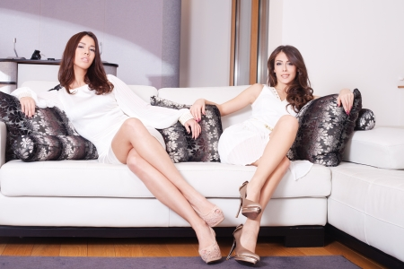 couple of elegant young women sit in living room  Stock Photo - 16847792