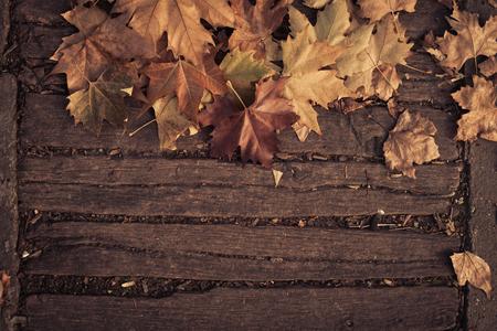 wooden bridge: fall leaves background on wooden bridge, closeup Stock Photo