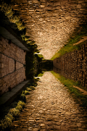 photo manipulation: cobble path up and down playing with perspective photo manipulation