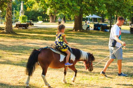 Vader neemt zijn kleine broer voor een ritje op pony paard in het park zomerdag