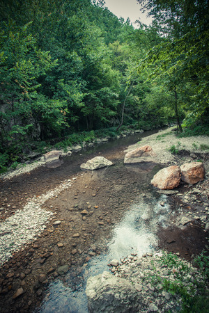 small mountain river with lot of stones and rocks and forest on banks landscape