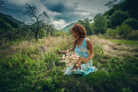 young woman pick herbs and flowers on clean wild mountain meadow in unpolluted nature summer day Lizenzfreie Bilder