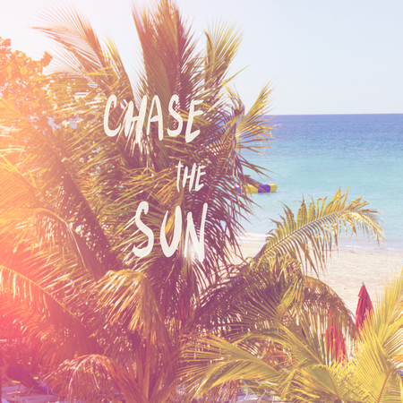 beautiful tropical  sandy beach with palms with summer quote chase the sun