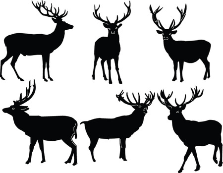 deers collection - vector