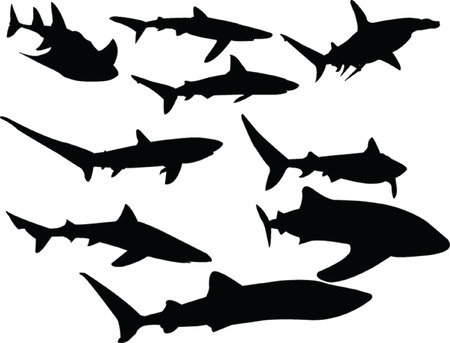 sharks collection - vector Stock Vector - 5118756