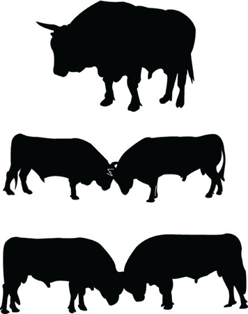 bullfighting: bulls silhouette collection