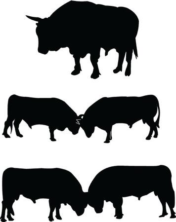 corrida: taureaux silhouette collection - vector Illustration