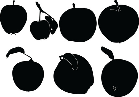 apples collection - vector Vector