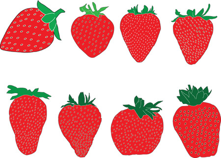 strawberry collection - vector Stock Vector - 5146431