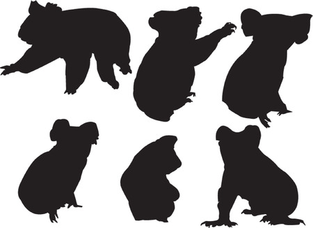 australian outback: koala silhouette collection - vector
