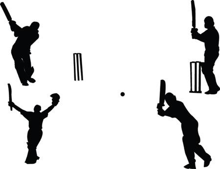 cricket collection Illustration