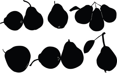 pears collection Vector