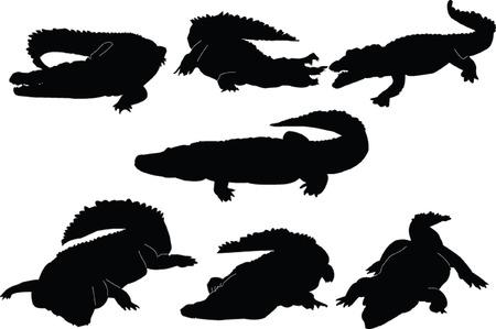 crocodiles collection - vector Vector