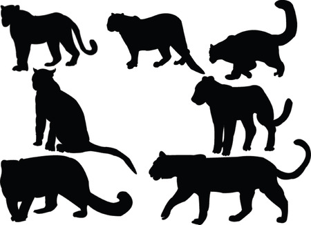 siberian: leopards collection silhouettes Illustration
