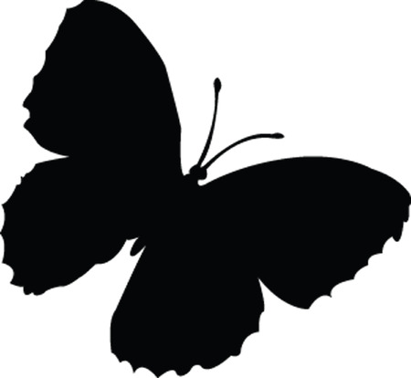 butterfly silhouette - vector Vector
