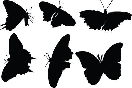 Butterfly Silhouette Sammlung - Vektor Vektorgrafik