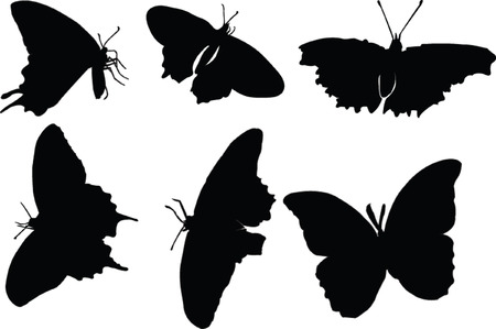 butterfly silhouette collection - vector Vector